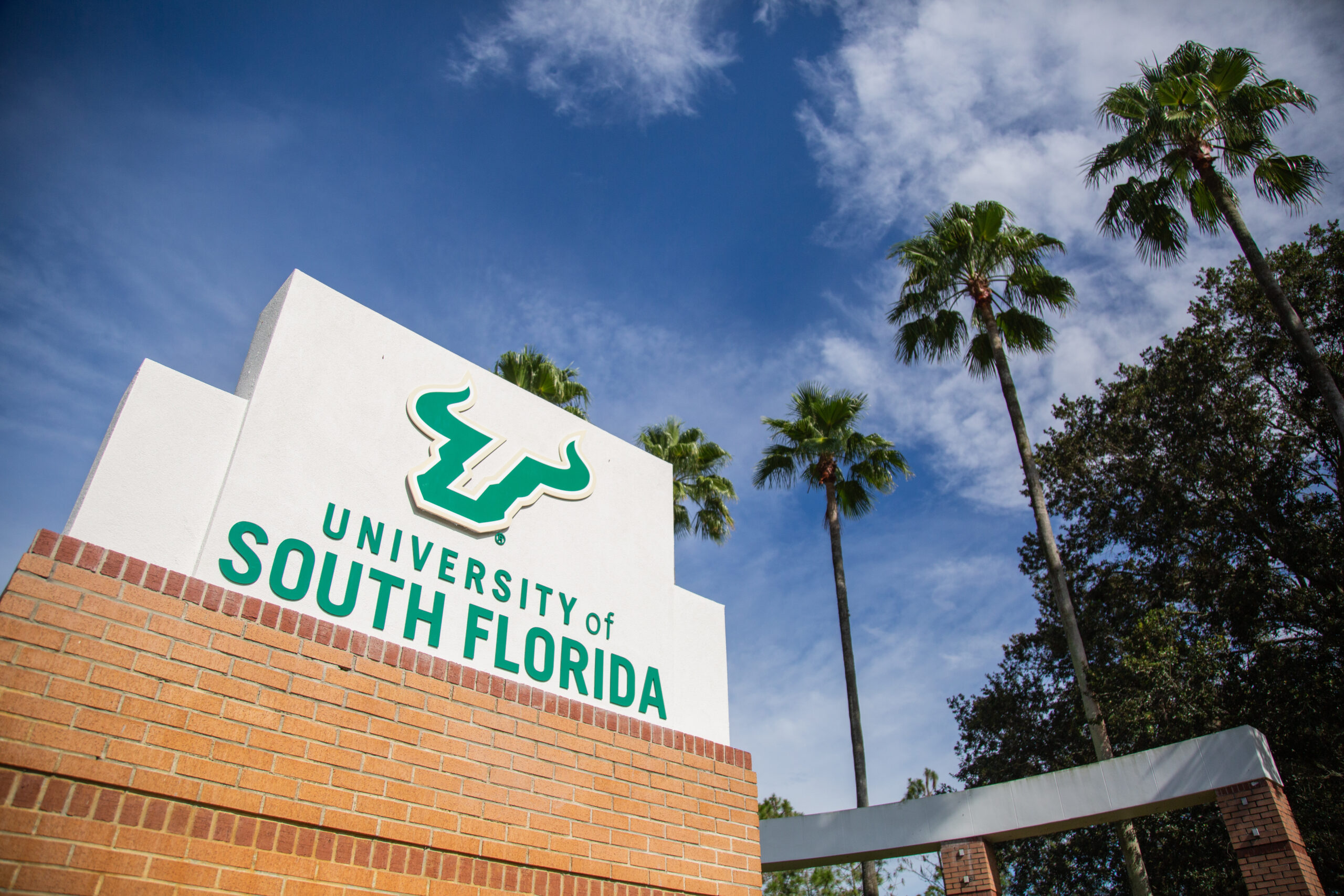 USF administration field questions about vaccinations, reopening plans in town hall – The Oracle